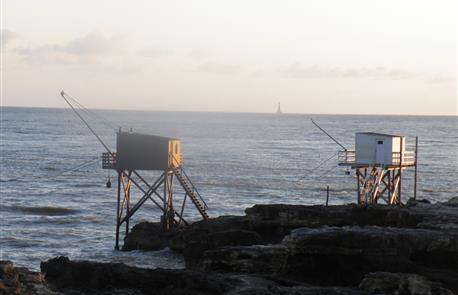 Camping naturiste le petit dauphin avec piscine chauff e en charentes maritime aux mathes la - Camping le port neuf la rochelle ...